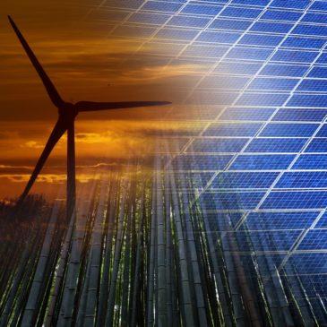 Vote en plénière du Parlement européen sur les directives sur les énergies renouvelables (REDDII) et l'efficacité énergétique (EED)